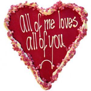 chocolade hart-valentijn rode chocola