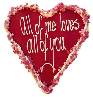 groot chocolade hart valentijn rode chocola