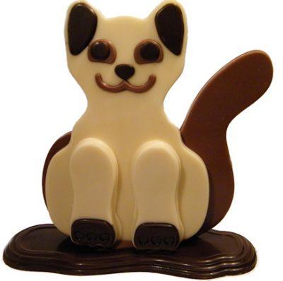 chocolade-kat